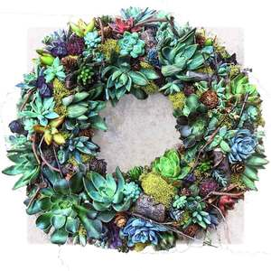 04.05 Succulent Wreath Party 1p